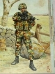 Postcard, Private, Royal Anglian Regiment, 1993.