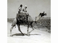 Bedouins - unknown Middle East location, undated.