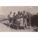 Railway Patrol near Lydda (Cairo - Haifa Line)