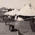 Nathanya Camp, Palestine