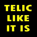Telic Like It Is (Newsletter), August 2008